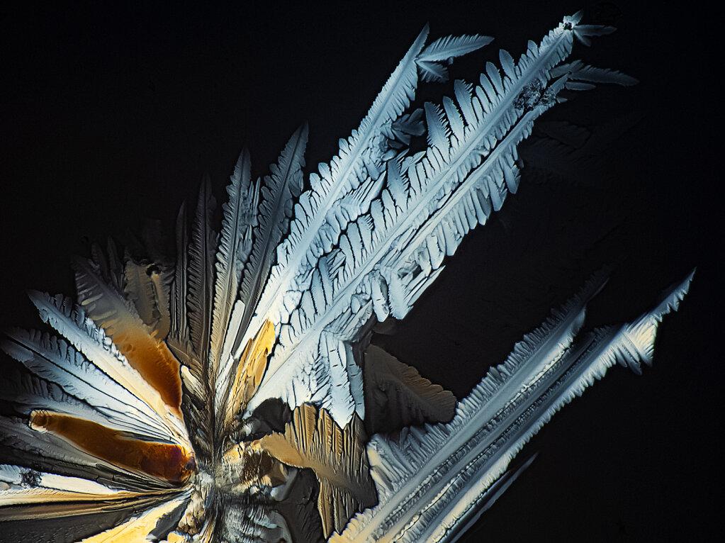 02cb-zitonensaeure-10b-mitu20-polar.jpg