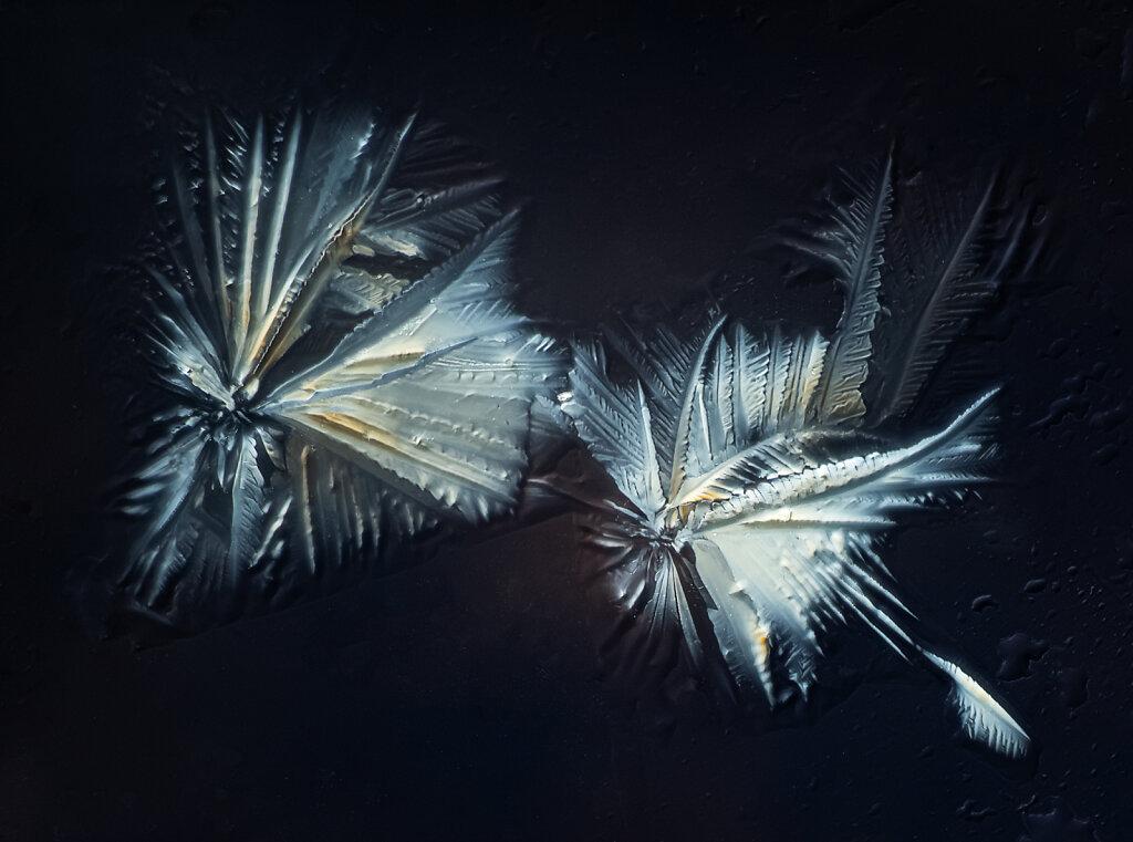 07cb-zitonensaeure-60b-mitu10-1flash-polar.jpg